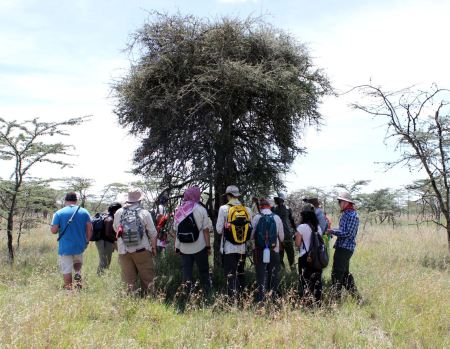 The students gather around as Mr. N'dung'u teaches them about the specific acacia tree species that grow on the black cotton soil.