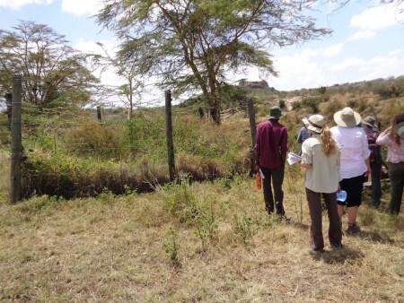 Students examining the enclosure