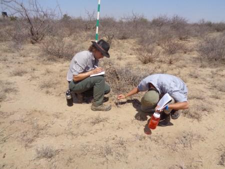Max and Jon taking measurements!