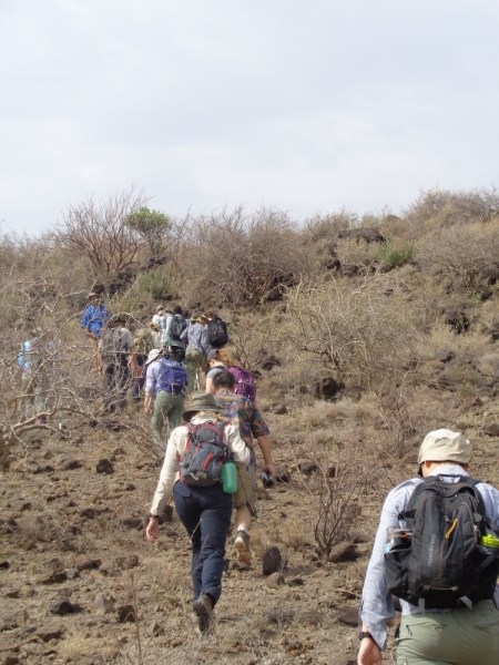 The desert roses we were looking for were scattered around a rocky outcropping. So up we went!