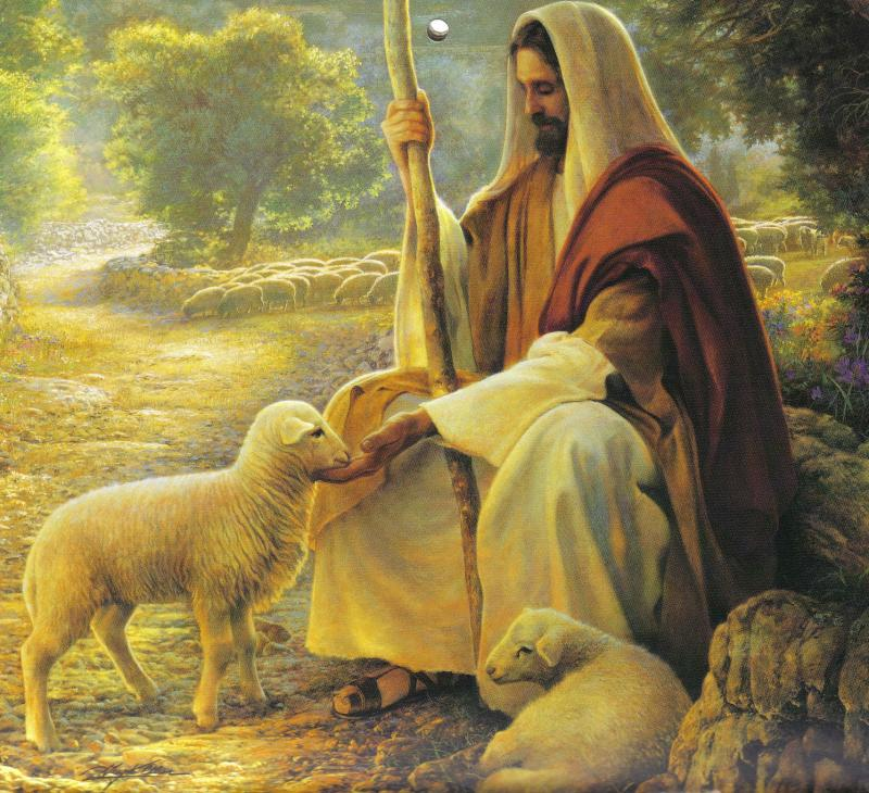 Biblical Reflection for the Fourth Sunday after Easter. | Catholicism Pure  & Simple