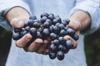 man holding grape