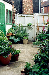 Turning Earth: truly tiny gardens on Terraced House Backyard Ideas id=80954