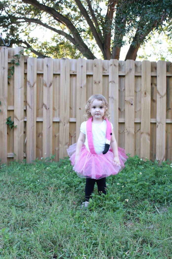 flamingo costume, shooting star costume, sailor costume
