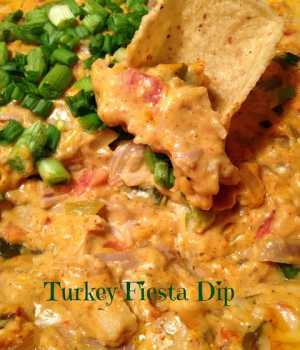 Warm Turkey Fiesta Dip Spicy and Cheesy
