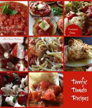 Terrific Tempting Tomato Recipes