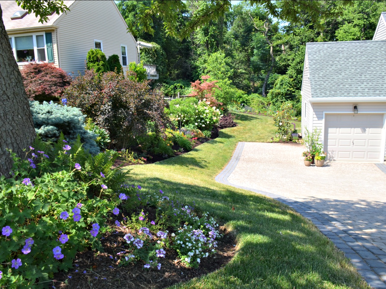 How To Plant A Low Maintenance Landscape Garden In Eastern