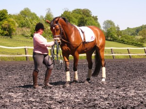 starting lateral work