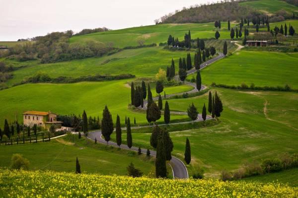 Tuscany Wine Tours Tuscan Tour Guide