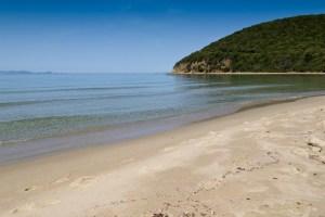Cala Violina, nelle Colline Metallifere, è una delle 6 spiagge più belle della Toscana