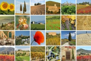 I simboli della Toscana sono 7 e ognuno rappresenta una caratteristica specifica della regione, dal Duomo di Firenze alla Torre di Pisa, alle mura di Lucca