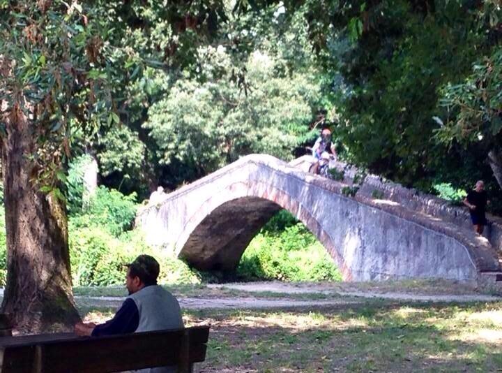 Il Versiliana Festival 2014 si svolge nel Parco della Versiliana