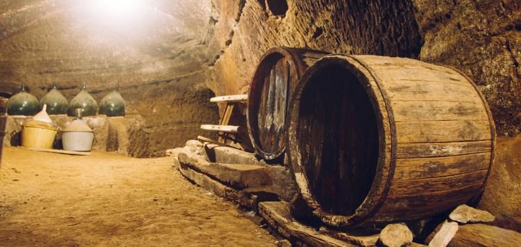 La Toscana si prepara all'Expo 2015 con Sharing Tuscany, network di turismo che propone nuovi percorsi basati sul benessere il buon vino e le acque termali