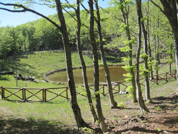 Lago degli Idoli - Sentiero delle Foreste Sacre - Parco Foreste Casentinesi