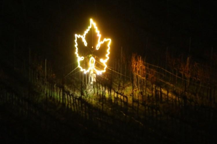 Luci in Vigna è un'installazione che omaggia il connubio tra uomo e natura illuminando le vigne di Villa Cerna nel Chianti con luci di Natale