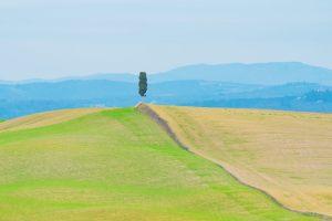 La provincia di Siena è una delle zone più conosciute della Toscana grazie ai 7 territori che la compongono: Val d'Orcia, Val di Merse, Chianti, Val di Chiana, Amiata, Val d'Elsa e Crete Senesi.