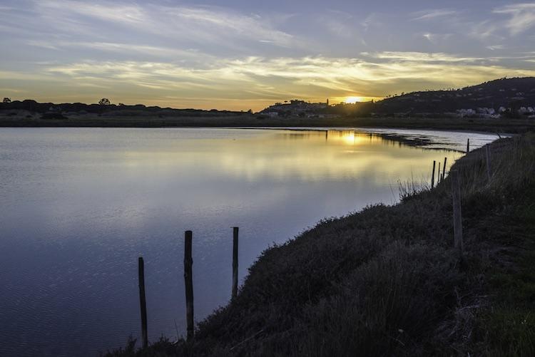 La Diaccia Botrona è una Riserva Naturale vicino a Castilgion della Pescaia nella Maremma grossetana, ideale per il birdwatching in Toscana