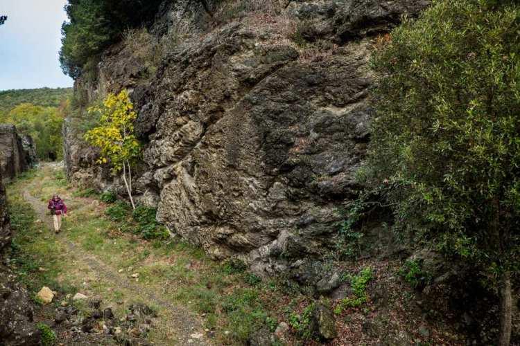 La Riserva Naturale Foresta del Berignone in Val di Cecina, nell'area di Volterra, è una meta ideale per gli amanti del trekking nella natura più incontaminata.