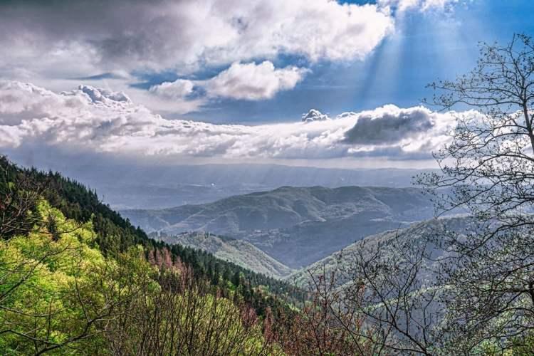 Il grande massiccio del Pratomagno, tra Casentino e Valdarno Superiore, è un affascinante giardino naturale, ricco di storia e tradizioni