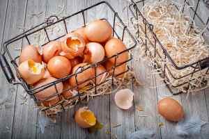 Raccolta di detti toscani: rompere le uova nel paniere