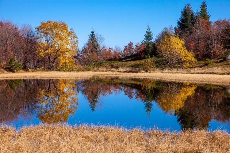 Il Lago Nero si trova sull'Appennino pistoiese vicino all'Abetone