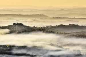 La Fattoria di Ugo Bing si trova nel Chianti Colli Fiorentini