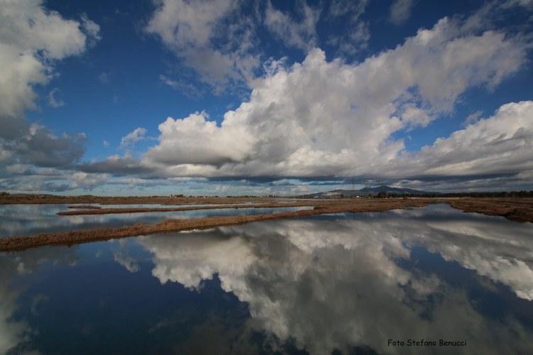 L'Oasi Padule Orti Bottagone si trova alle porte di Piombino, è una delle 17 oasi del WWF in Toscana