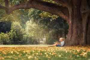 Ragazzo legge libro sotto un grande albero