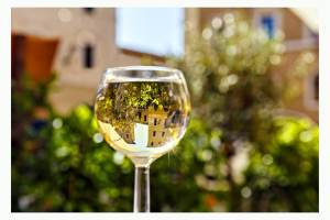 Tra i migliori vini bianchi toscani troviamo il Bianco di Pitigliano