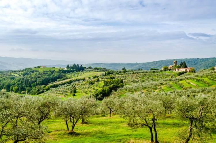 La campagna toscana nei dintorni del borgo di Carmignano