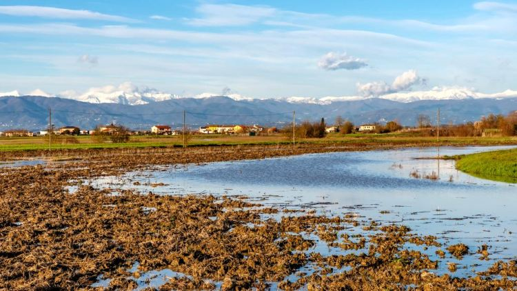Il Lago di Bientina in provincia di Pisa, conosciuta in antichità come Lago di Sesto