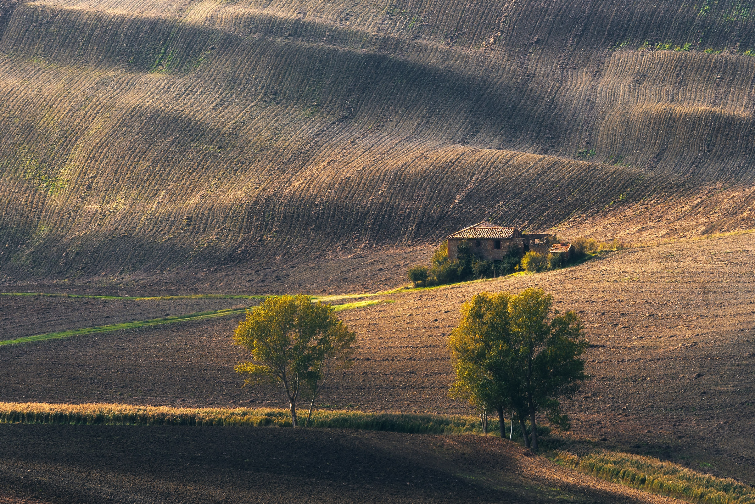rural landscape of tuscany in autumn