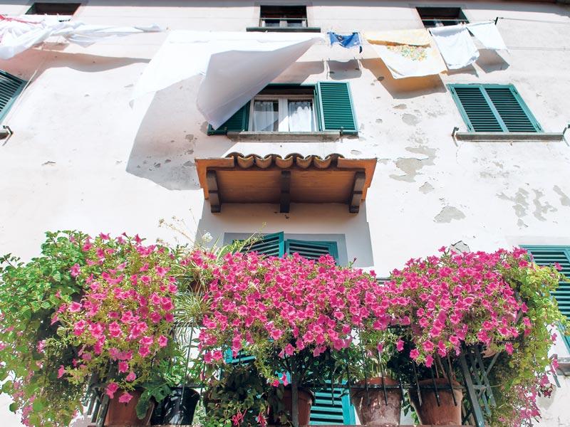 Laundry flowers and balcony, Pescia