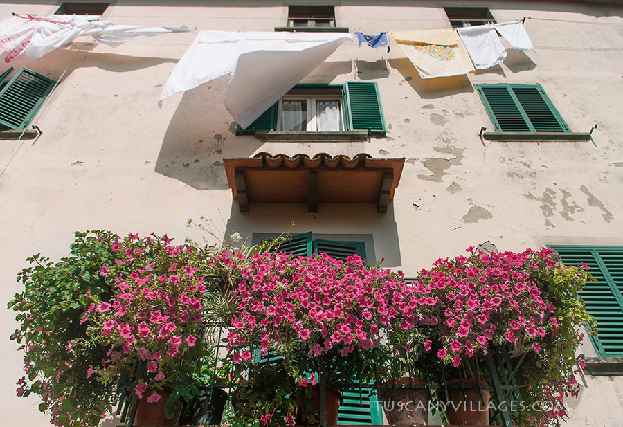 Flowers and Laundry, Vellano, Pescia, Tuscany Italy