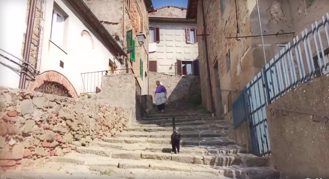 Cat-video-bomb-Tuscany