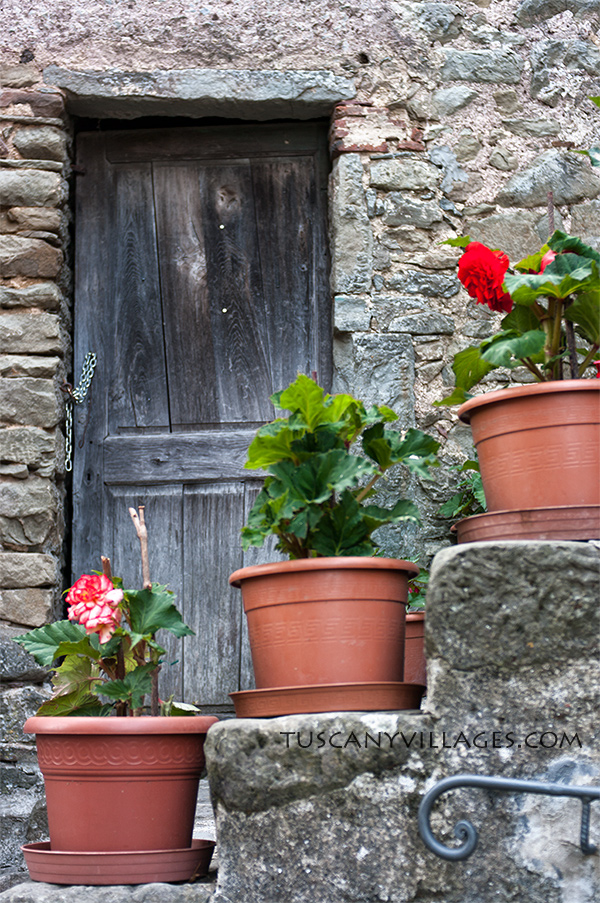 brown-door-and-flower-pots-Tuscany