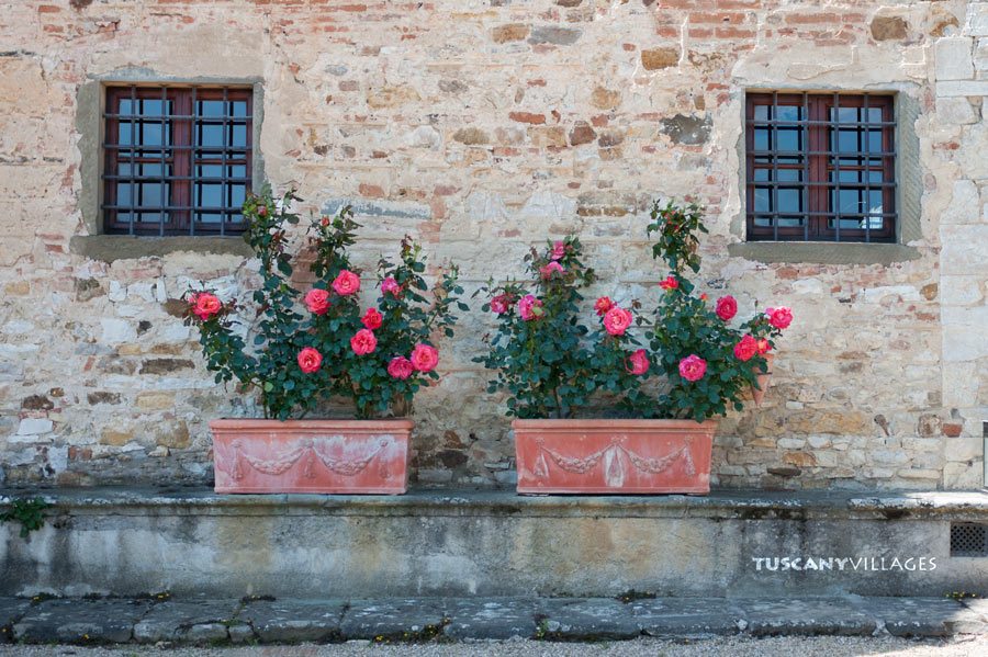 flowers - castle - windows