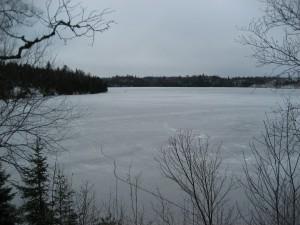 2013.11.19 ice in (7)