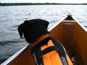 "Lucy says ""Safety first!  Wear your life jackets."""