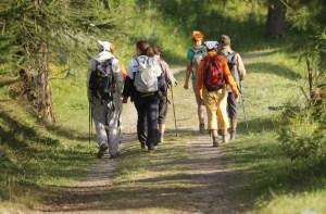 persone che camminano nella natura