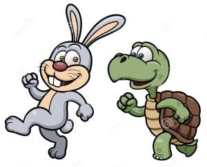 Una tartaruga insegue una lepre