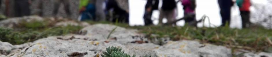 Tuscia Trekking Experience-news