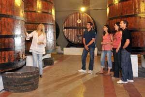 49.000 enoturistas visitan la Ruta del vino Somontano en 2010