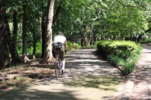Tokio en bicicleta