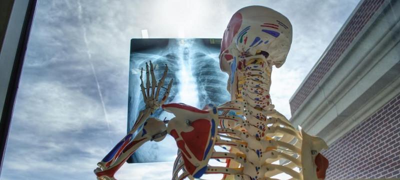 ¿Qué pruebas médicasnecesitan autorización de la aseguradora y por qué?