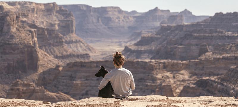 Planes de primavera con tu perro
