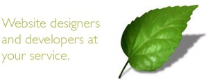 Web site designers and developers at your service