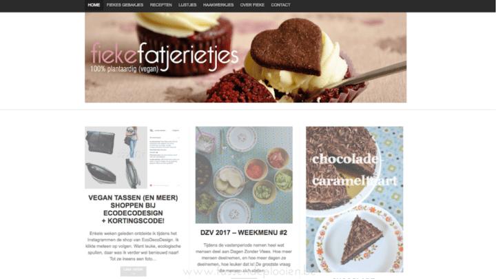 Blogger in de kijker - Fiekefatjerietjes