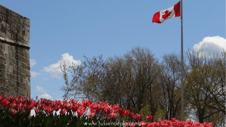 Canada - Het land waar ik mijn hart aan verloor