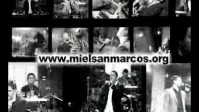 Photo of AVANCES1 AVIVAMIENTO MIEL SAN MARCOS GRABACION EN VIVO 31 DE JULIO